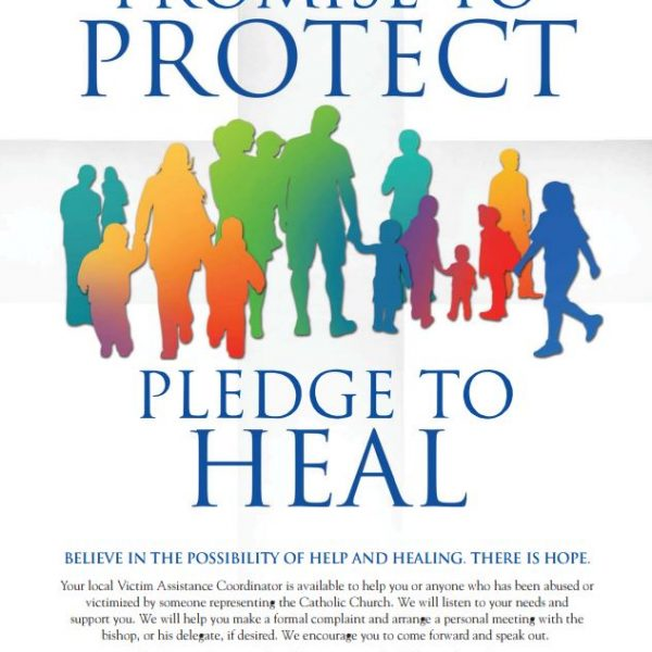 Promise to Protect, Pledge to Heal Poster – English